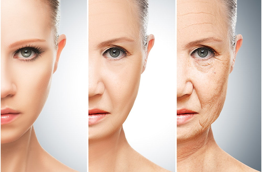 The Secret to Graceful Aging: Treat Your Telomeres with Love